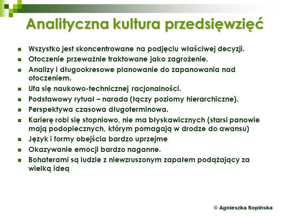 © Agnieszka Sopińska Analityczna kultura przedsięwzięć Wszystko jest skoncentrowane na podjęciu właściwej decyzji.