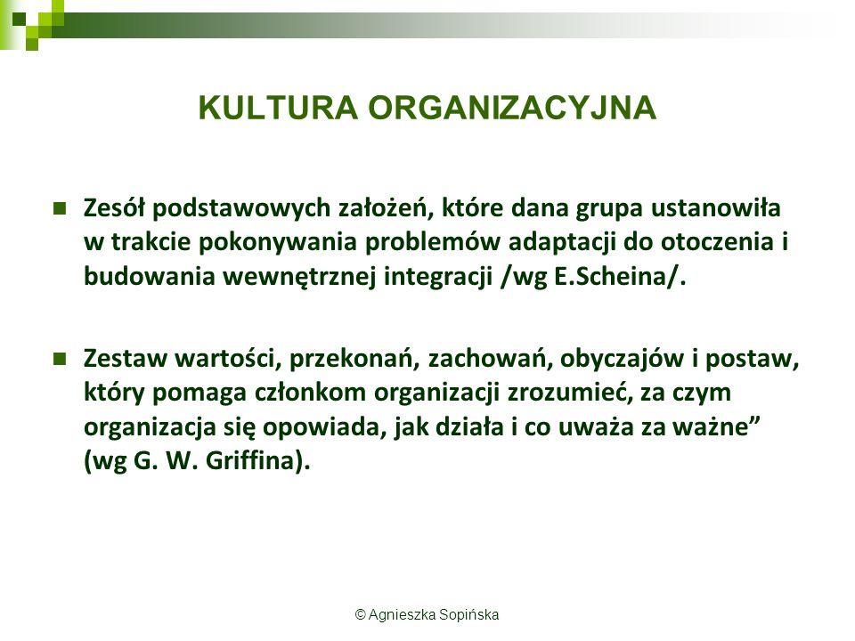 KULTURA ORGANIZACYJNA Zesół podstawowych założeń, które dana grupa ustanowiła w trakcie pokonywania problemów adaptacji do otoczenia i budowania wewnętrznej integracji /wg E.Scheina/.