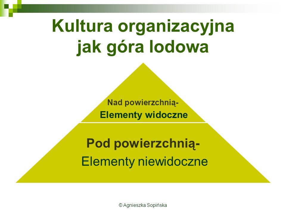Kultura organizacyjna jak góra lodowa © Agnieszka Sopińska