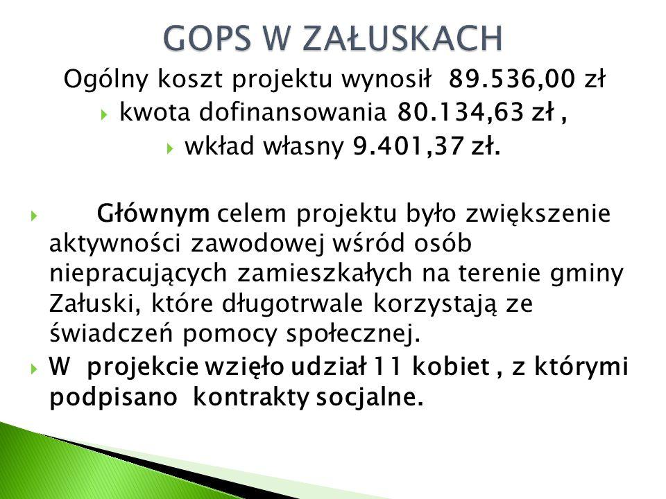 Ogólny koszt projektu wynosił 89.536,00 zł  kwota dofinansowania 80.134,63 zł,  wkład własny 9.401,37 zł.