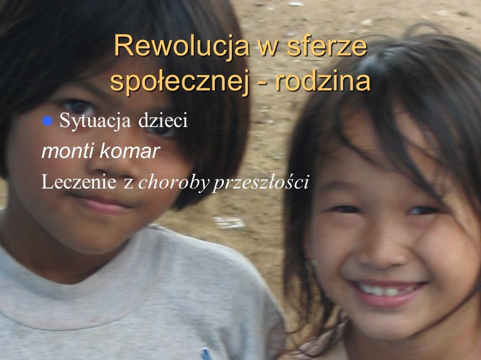 Rewolucja w sferze społecznej - rodzina Sytuacja dzieci monti komar Leczenie z choroby przeszłości
