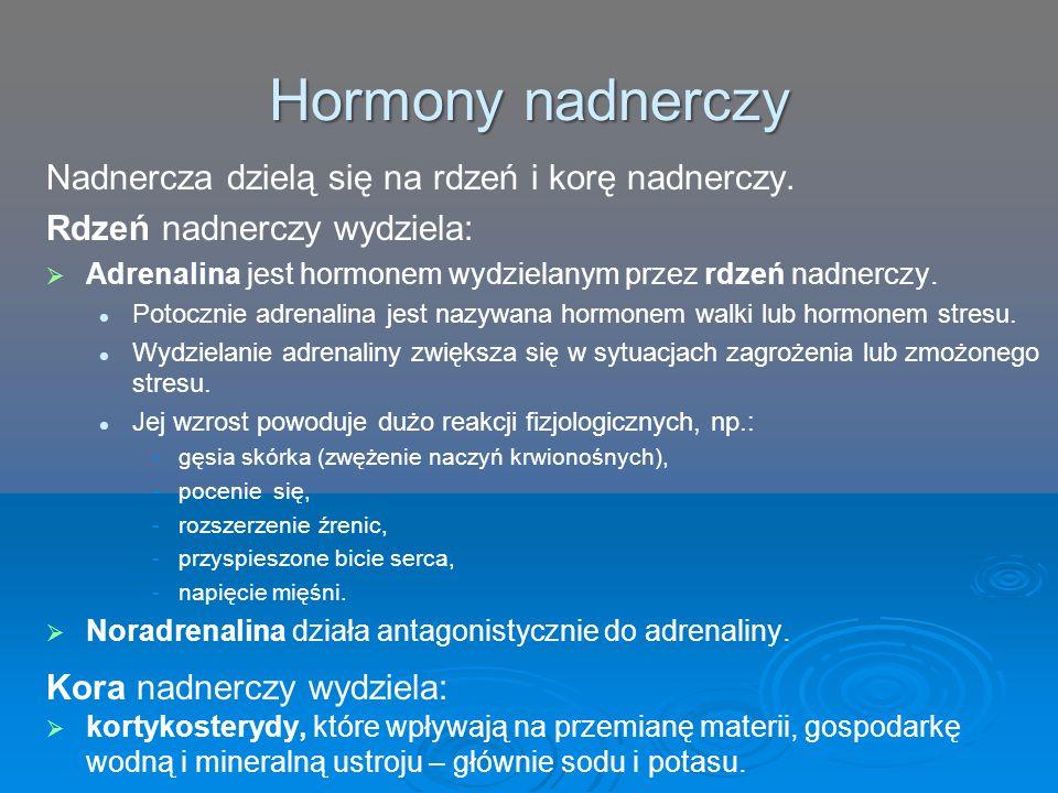 Hormony nadnerczy Nadnercza dzielą się na rdzeń i korę nadnerczy. Rdzeń nadnerczy wydziela:   Adrenalina jest hormonem wydzielanym przez rdzeń nadne