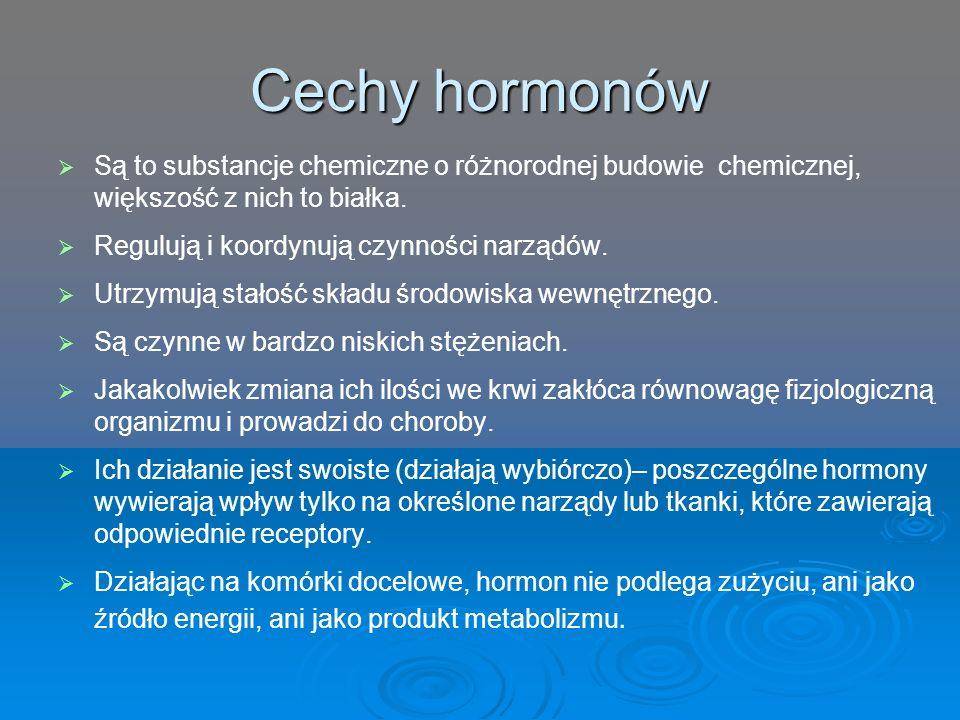 Cechy hormonów   Są to substancje chemiczne o różnorodnej budowie chemicznej, większość z nich to białka.   Regulują i koordynują czynności narząd