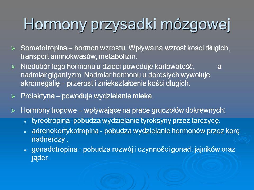 Hormony przysadki mózgowej   Somatotropina – hormon wzrostu. Wpływa na wzrost kości długich, transport aminokwasów, metabolizm.   Niedobór tego ho