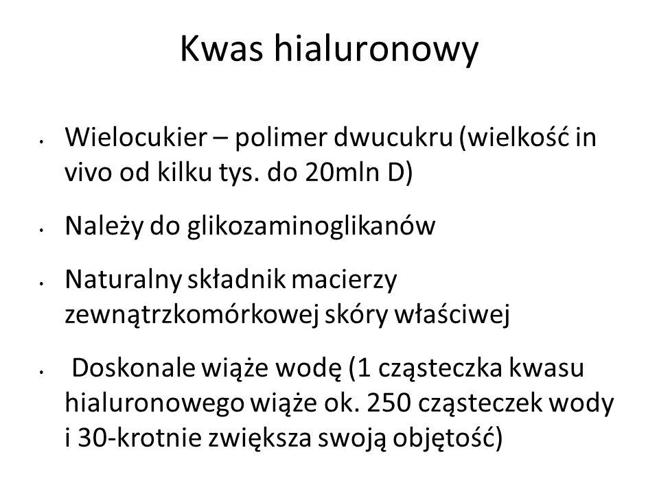 Kwas hialuronowy Wielocukier – polimer dwucukru (wielkość in vivo od kilku tys. do 20mln D) Należy do glikozaminoglikanów Naturalny składnik macierzy