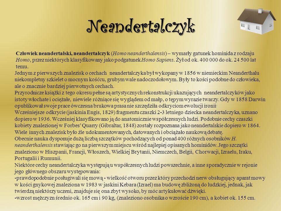 Neandertalczyk Człowiek neandertalski, neandertalczyk (Homo neanderthalensis) – wymarły gatunek hominida z rodzaju Homo, przez niektórych klasyfikowan