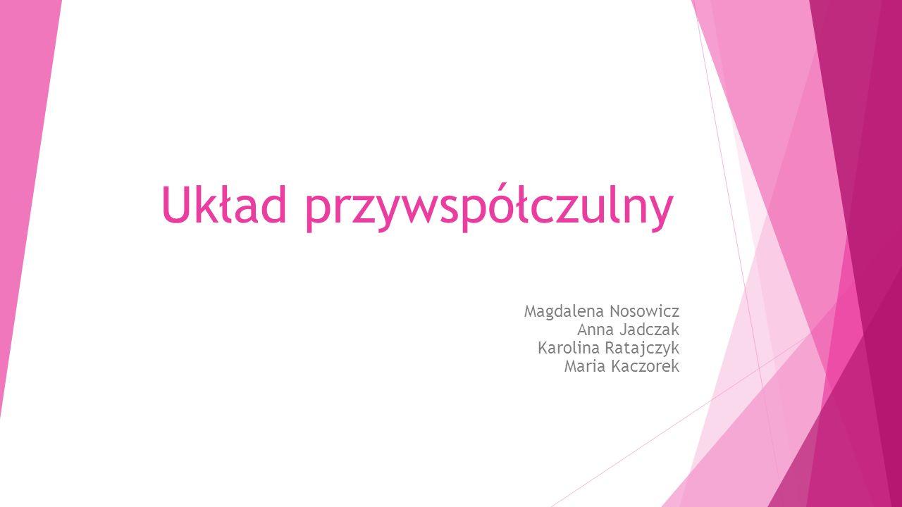 Układ przywspółczulny Magdalena Nosowicz Anna Jadczak Karolina Ratajczyk Maria Kaczorek