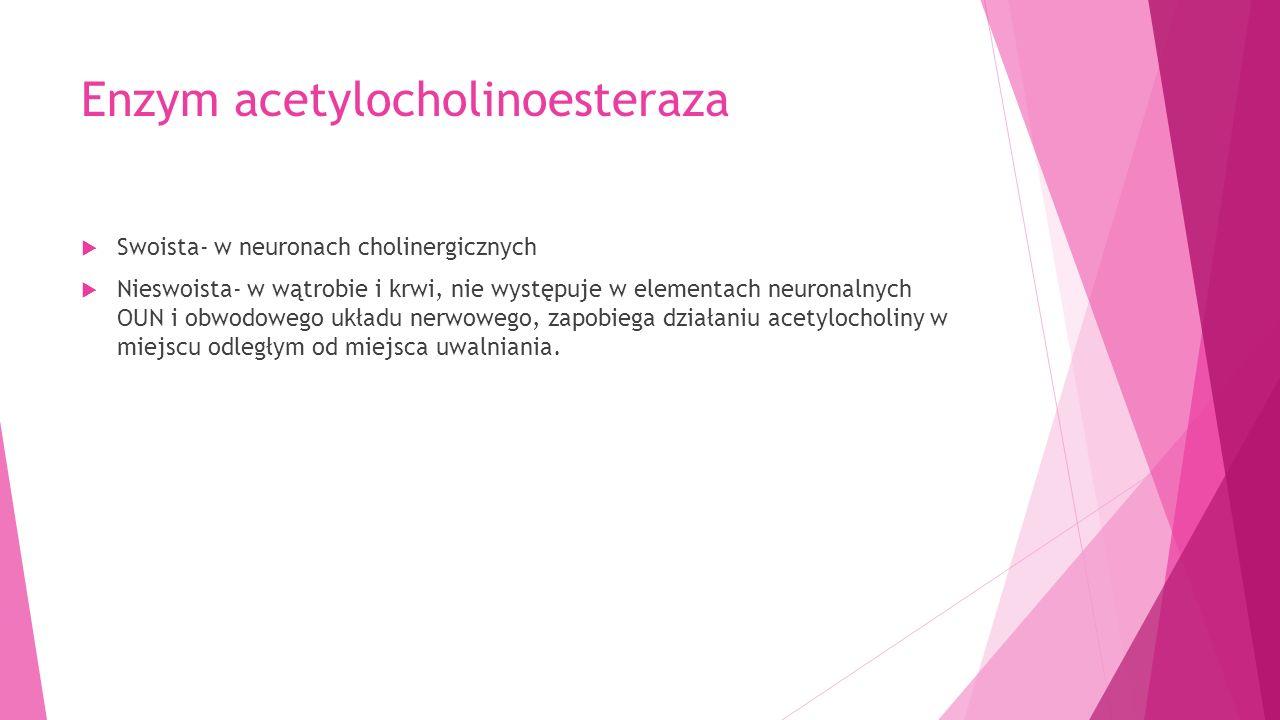 Enzym acetylocholinoesteraza  Swoista- w neuronach cholinergicznych  Nieswoista- w wątrobie i krwi, nie występuje w elementach neuronalnych OUN i obwodowego układu nerwowego, zapobiega działaniu acetylocholiny w miejscu odległym od miejsca uwalniania.
