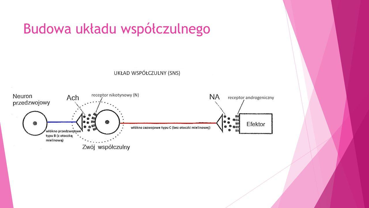 Postępowanie przy zatruciu związkami fosforoorganicznymi ATROPINIZACJA  NATYCHMIAST po stwierdzeniu objawów zatrucia, początkowo 2-5 mg i.v., a następnie 1-2 mg co 5-15 minut do momentu wystąpienia suchości błon śluzowych, rozszerzenia źrenic, zaczerwienia i suchości skóry oraz tachykardii 120/min  Utrzymywać chorego w stale na granicy przedawkowania atropiny  Tachykardia nie stanowi p/wskazania do stosowania atropiny u osób zatrutych związkami fosforoorganicznymi  NIE PODAWAĆ atropiny u osób z sinicą ze względu na możliwość wystąpienie migotania komór (pierwotnie należy natlenić chorego)  Jeżeli nie można podać i.v.