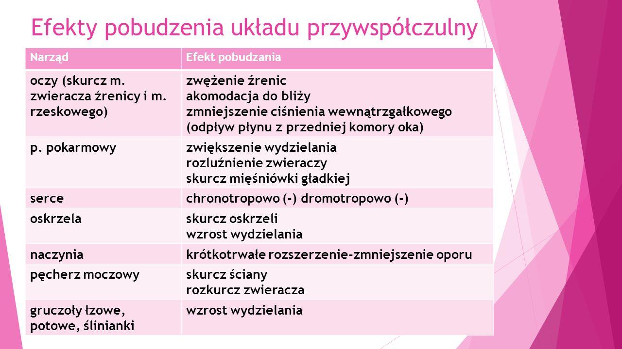 Leki hamujące czynność układu przywspółczulnego = parasypatykolityki = cholinolityki Wyłącznie antagoniści receptora muskarynowego.
