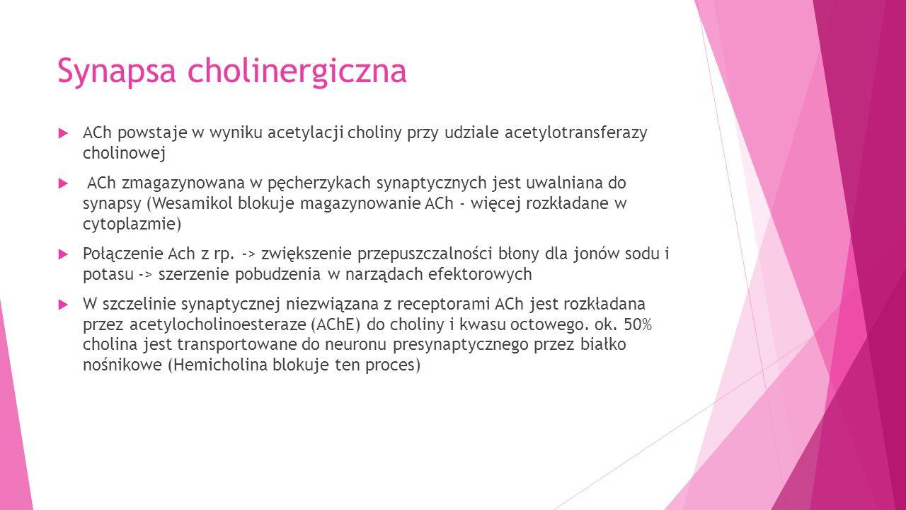 PODZIAŁ LEKÓW CHOLINOLITYCZNYCH Leki cholinolityczne naturalne = alkaloidy tropanowe Leki cholinolityczne półsyntetyczne = pochodne alkaloidów tropanowych Leki cholinolityczne syntetyczne Nieposiadające działanie ośrodkowe Posiadające działania ośrodkowego atropinametyloskopolaminabiperindentropikamidhomatropina skopolamina = hioscynabutyloskopolaminabenzatropinaipratropiumtiotropium bromowodorek skopolaminytriheksyfenidyltelenzepinapirenzepina tolterydyna i podobne oksybutyninaderafenacyna fezoterodynasolifenacyna