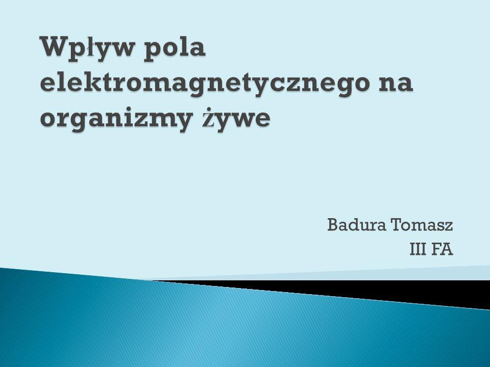 Badura Tomasz III FA