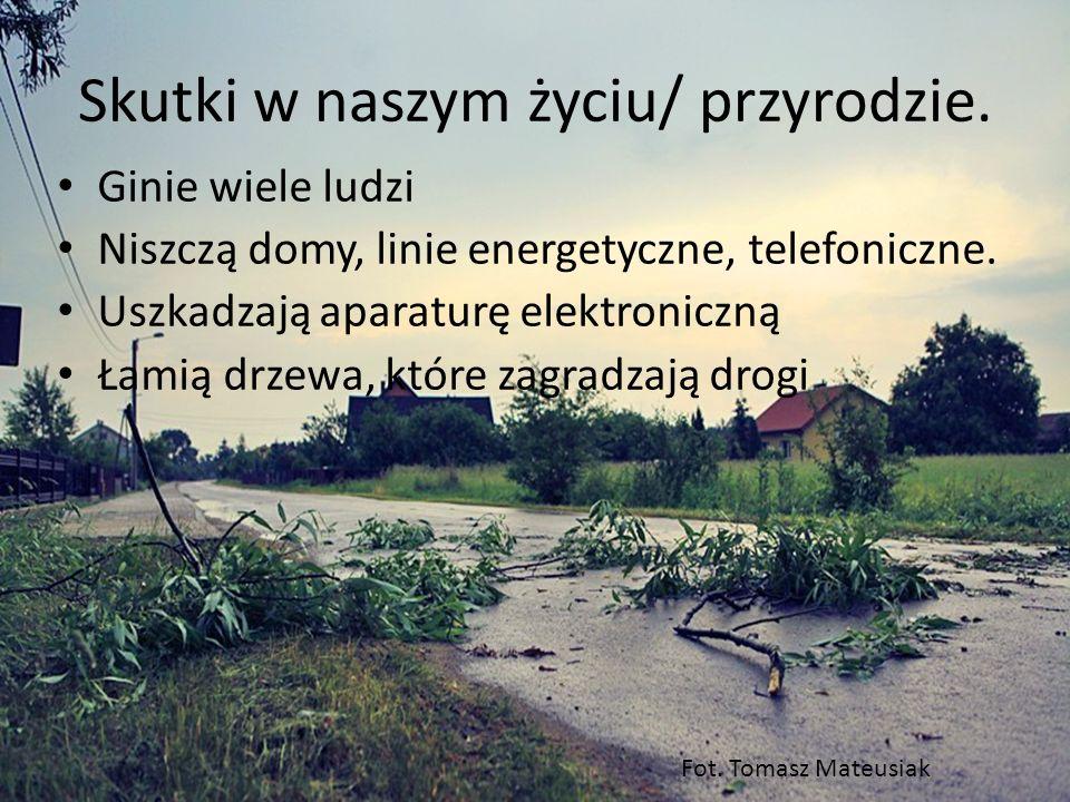 Skutki w naszym życiu/ przyrodzie. Ginie wiele ludzi Niszczą domy, linie energetyczne, telefoniczne. Uszkadzają aparaturę elektroniczną Łamią drzewa,