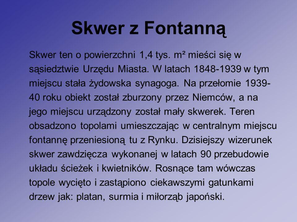 Skwer z Fontanną Skwer ten o powierzchni 1,4 tys. m² mieści się w sąsiedztwie Urzędu Miasta.