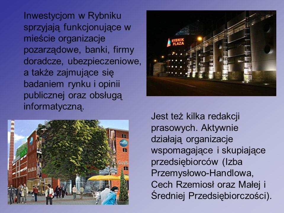 Inwestycjom w Rybniku sprzyjają funkcjonujące w mieście organizacje pozarządowe, banki, firmy doradcze, ubezpieczeniowe, a także zajmujące się badaniem rynku i opinii publicznej oraz obsługą informatyczną.