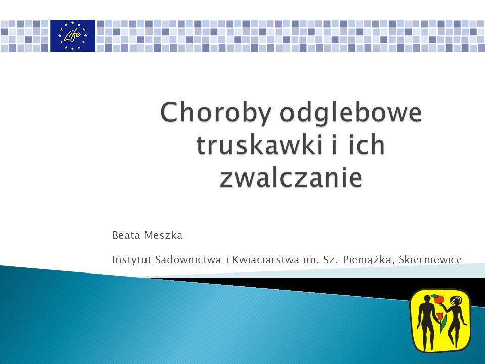 Beata Meszka Instytut Sadownictwa i Kwiaciarstwa im. Sz. Pieniążka, Skierniewice