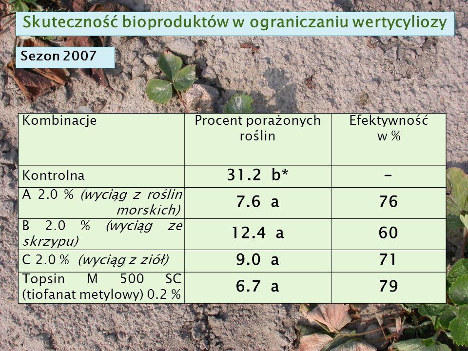 KombinacjeProcent porażonych roślin Efektywność w % Kontrolna 31.2 b*- A 2.0 % (wyciąg z roślin morskich) 7.6 a76 B 2.0 % (wyciąg ze skrzypu) 12.4 a60 C 2.0 % (wyciąg z ziół) 9.0 a71 Topsin M 500 SC (tiofanat metylowy) 0.2 % 6.7 a79 Skuteczność bioproduktów w ograniczaniu wertycyliozy Sezon 2007