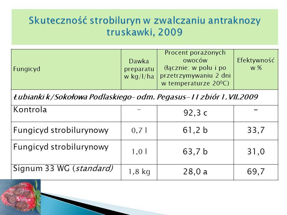 Fungicyd Dawka preparatu w kg/l/ha Procent porażonych owoców (łącznie: w polu i po przetrzymywaniu 2 dni w temperaturze 20 0 C) Efektywność w % Łubianki k/Sokołowa Podlaskiego– odm.