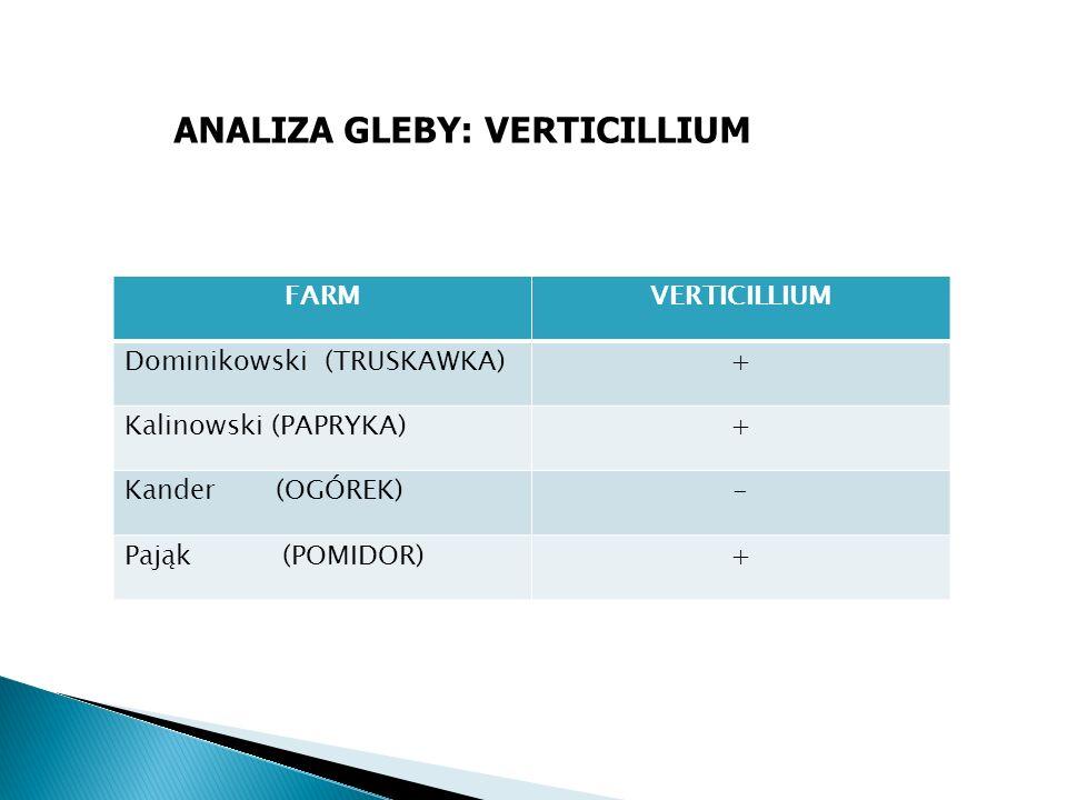 FARMVERTICILLIUM Dominikowski (TRUSKAWKA)+ Kalinowski (PAPRYKA)+ Kander (OGÓREK)- Pająk (POMIDOR)+ ANALIZA GLEBY: VERTICILLIUM