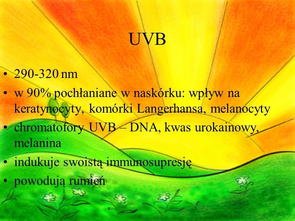 UVB 290-320 nm w 90% pochłaniane w naskórku: wpływ na keratynocyty, komórki Langerhansa, melanocyty chromatofory UVB – DNA, kwas urokainowy, melanina indukuje swoistą immunosupresję powodują rumień