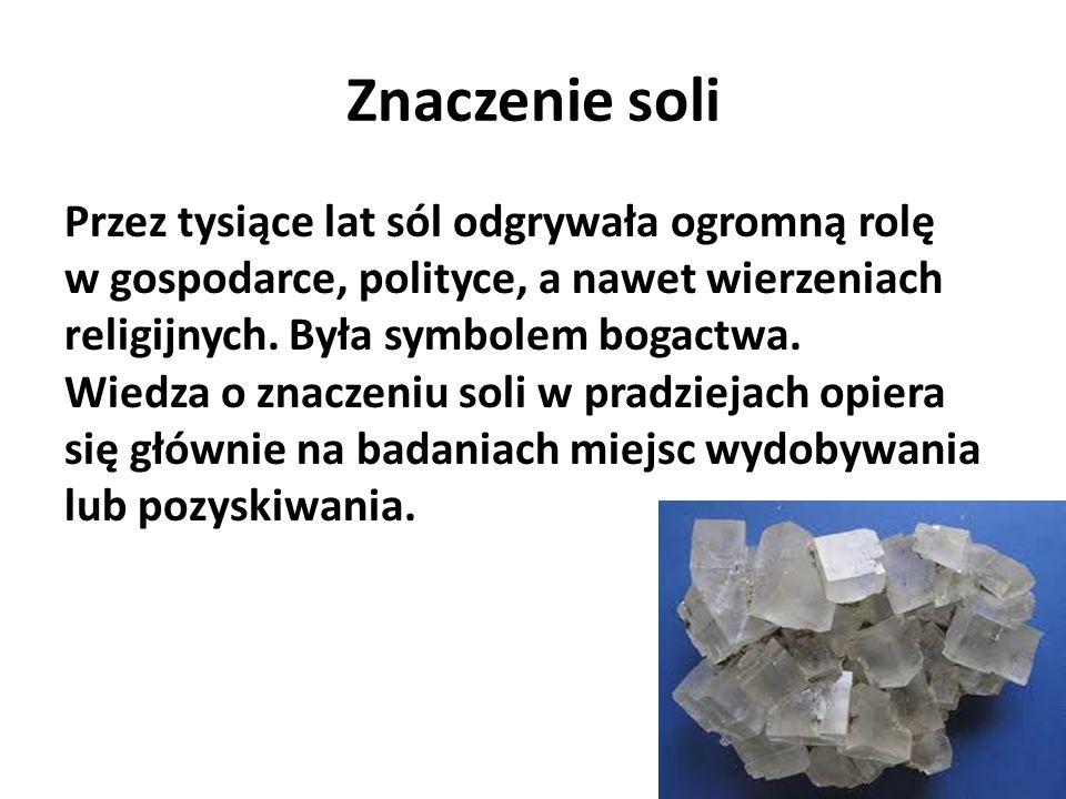 Sposoby pozyskiwania soli W Europie minerał ten pozyskiwano w wielu miejscach na różne sposoby -przez odparowywanie wody morskiej, - warzenie solanek (naturalnych wód zawierających dużo soli) -górniczą eksploatację pokładów soli kamiennej.