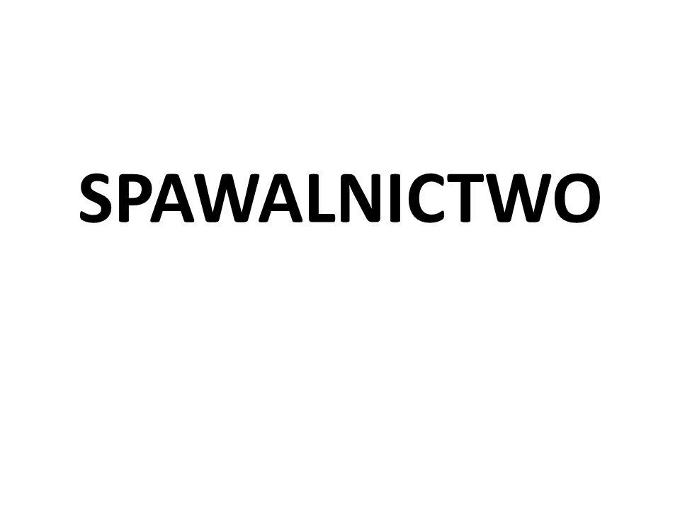 SPAWALNICTWO