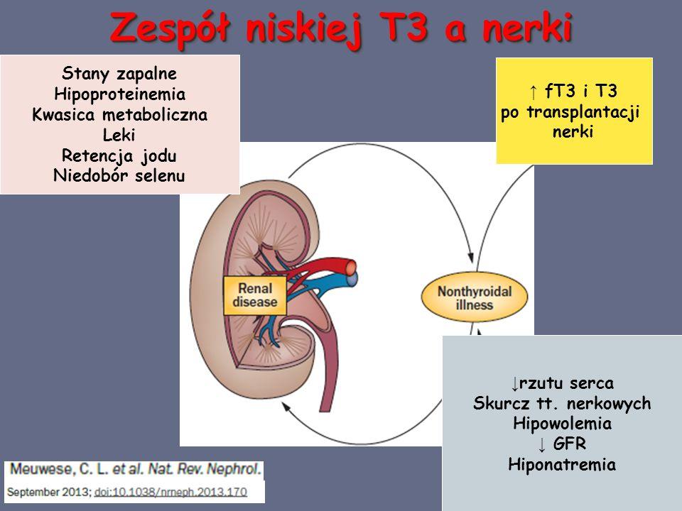 Zespół niskiej T3 a nerki Stany zapalne Hipoproteinemia Kwasica metaboliczna Leki Retencja jodu Niedobór selenu ↓ rzutu serca Skurcz tt.