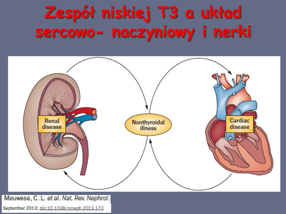 Zespół niskiej T3 a układ sercowo- naczyniowy i nerki