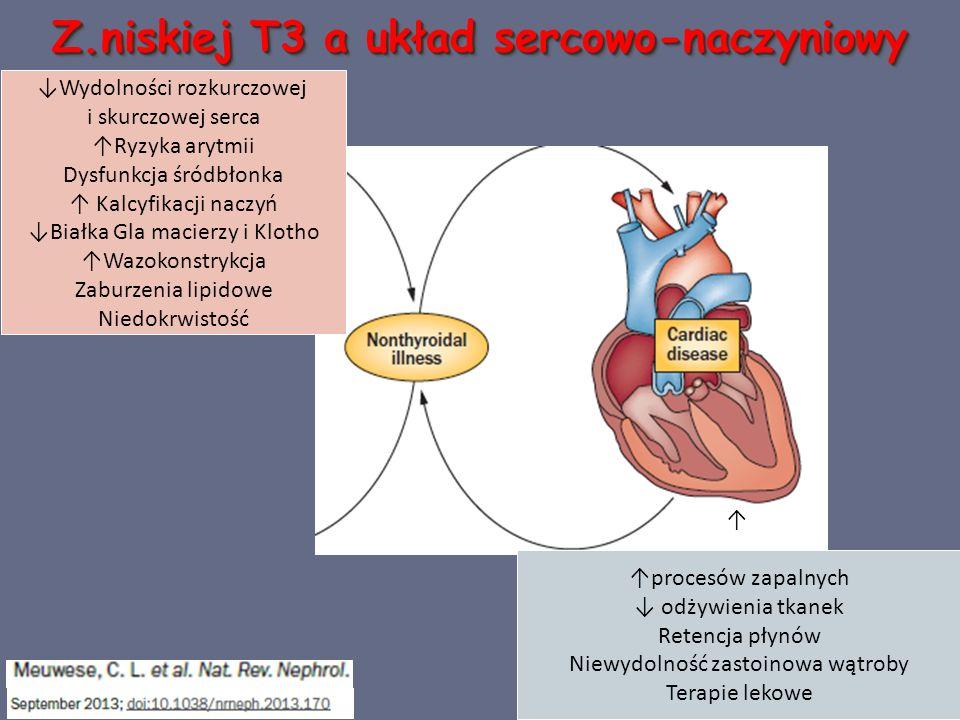 Z.niskiej T3 a układ sercowo-naczyniowy ↓Wydolności rozkurczowej i skurczowej serca ↑Ryzyka arytmii Dysfunkcja śródbłonka ↑ Kalcyfikacji naczyń ↓Białka Gla macierzy i Klotho ↑Wazokonstrykcja Zaburzenia lipidowe Niedokrwistość ↑ ↑procesów zapalnych ↓ odżywienia tkanek Retencja płynów Niewydolność zastoinowa wątroby Terapie lekowe