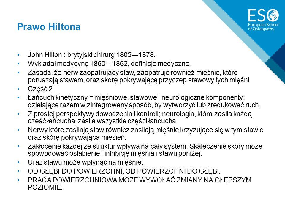 John Hilton : brytyjski chirurg 1805—1878.Wykładał medycynę 1860 – 1862, definicje medyczne.
