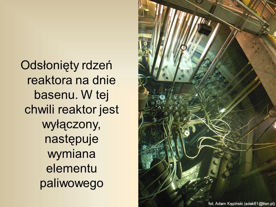 Odsłonięty rdzeń reaktora na dnie basenu.