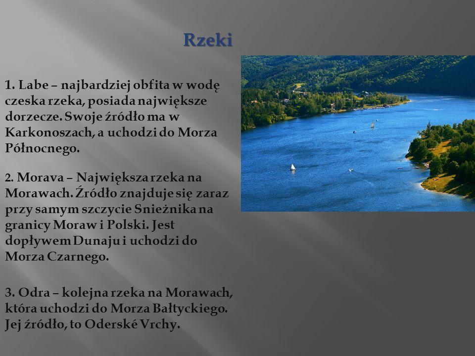 Rzeki 1. Labe – najbardziej obfita w wodę czeska rzeka, posiada największe dorzecze.