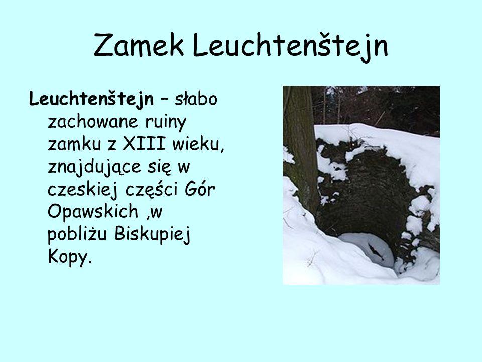 Zamek Leuchtenštejn Leuchtenštejn – słabo zachowane ruiny zamku z XIII wieku, znajdujące się w czeskiej części Gór Opawskich,w pobliżu Biskupiej Kopy.