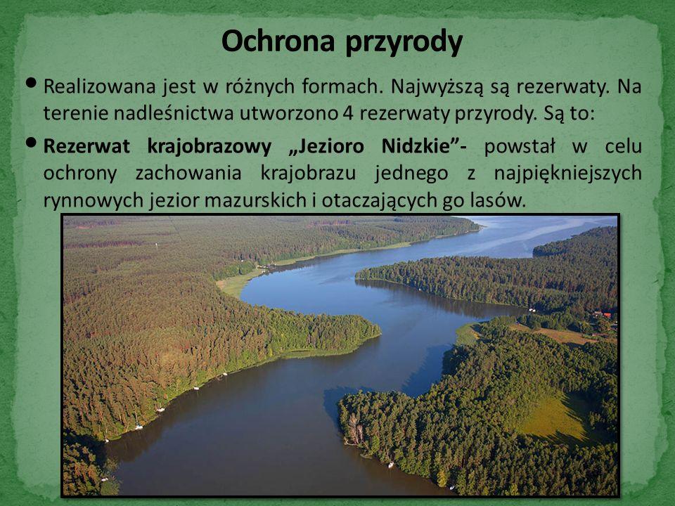 Realizowana jest w różnych formach. Najwyższą są rezerwaty.
