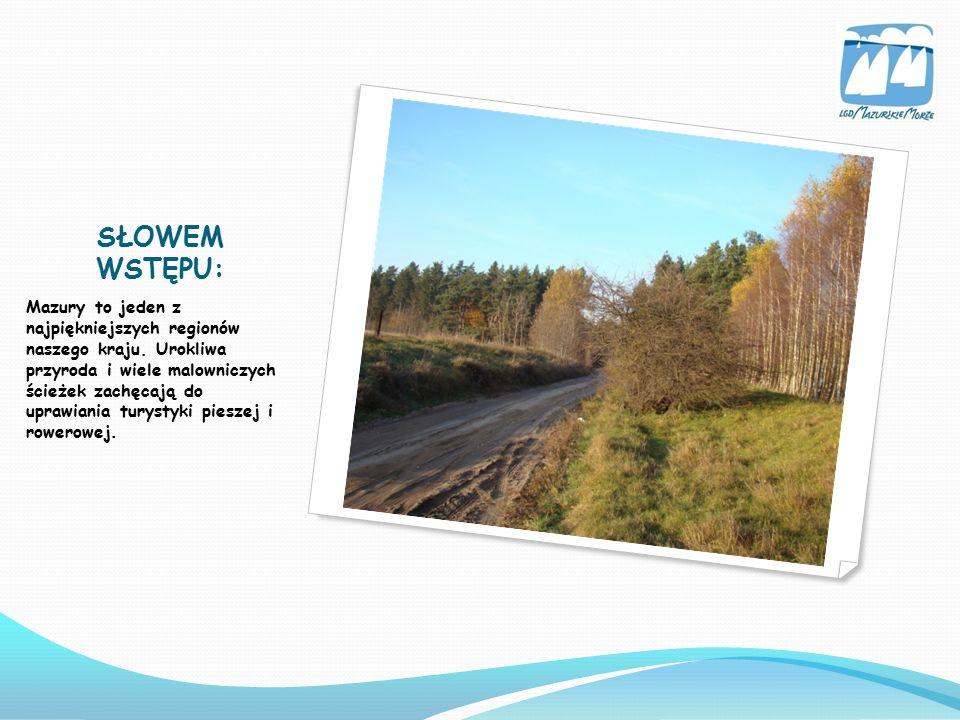 Szlaki Mazurskiego Parku Krajobrazowego Szlak rowerowy -,,JEZIORO MOKRE Trasa - Krutyń-Zgon-Cierzpięty-Krutyń (19 km ) Szlak posiada dużą ilość miejsc widokowych oraz pomników przyrody.