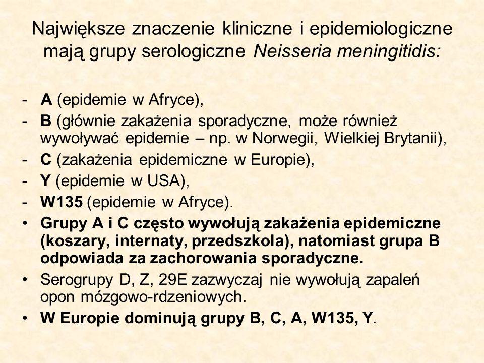 Największe znaczenie kliniczne i epidemiologiczne mają grupy serologiczne Neisseria meningitidis: - A (epidemie w Afryce), -B (głównie zakażenia spora