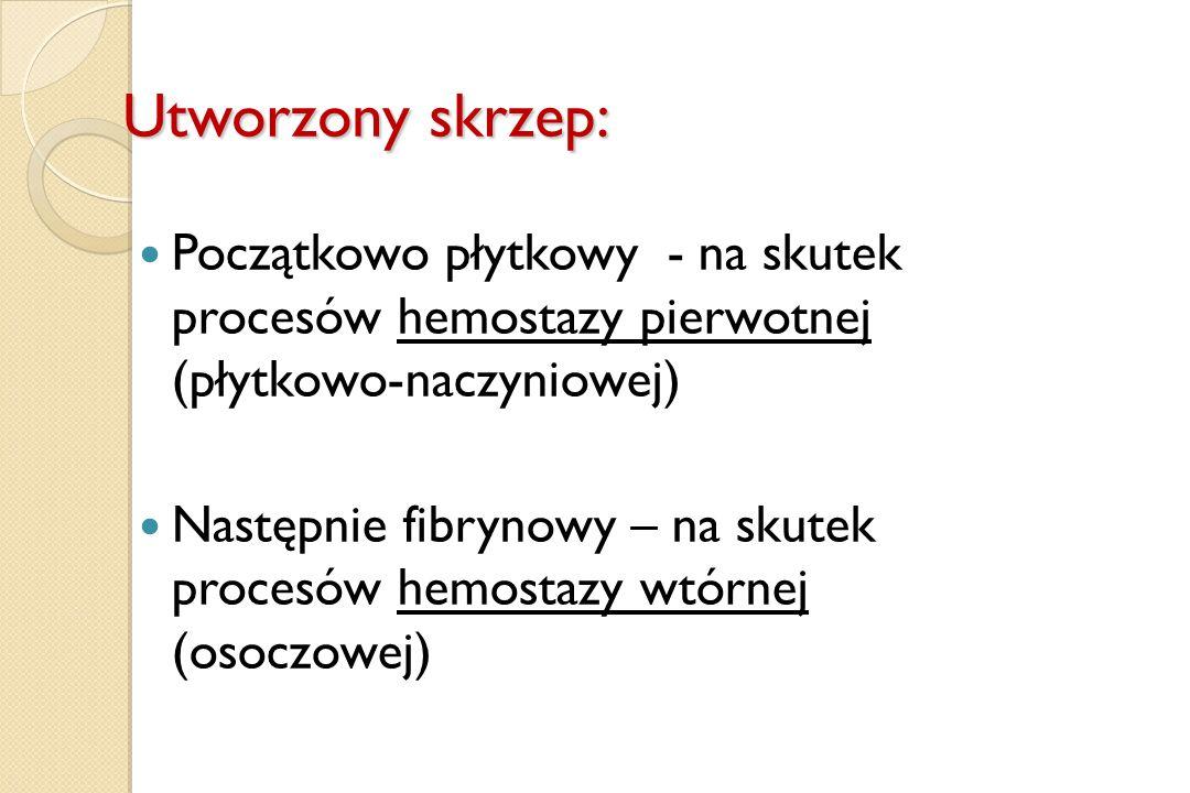 Utworzony skrzep: Początkowo płytkowy - na skutek procesów hemostazy pierwotnej (płytkowo-naczyniowej) Następnie fibrynowy – na skutek procesów hemost