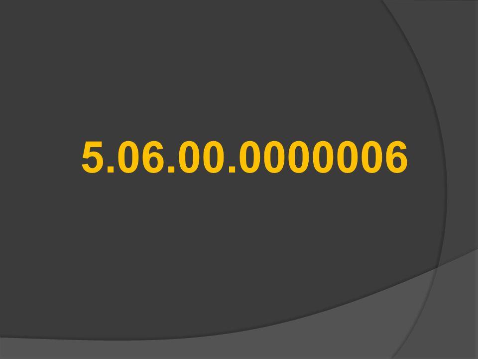 5.06.00.0000006