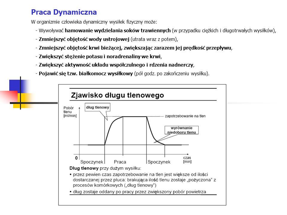 Praca Dynamiczna W organizmie człowieka dynamiczny wysiłek fizyczny może: - Wywoływać hamowanie wydzielania soków trawiennych (w przypadku ciężkich i długotrwałych wysiłków), - Zmniejszyć objętość wody ustrojowej (utrata wraz z potem), - Zmniejszyć objętość krwi bieżącej, zwiększając zarazem jej prędkość przepływu, - Zwiększyć stężenie potasu i noradrenaliny we krwi, - Zwiększyć aktywność układu współczulnego i rdzenia nadnerczy, - Pojawić się tzw.