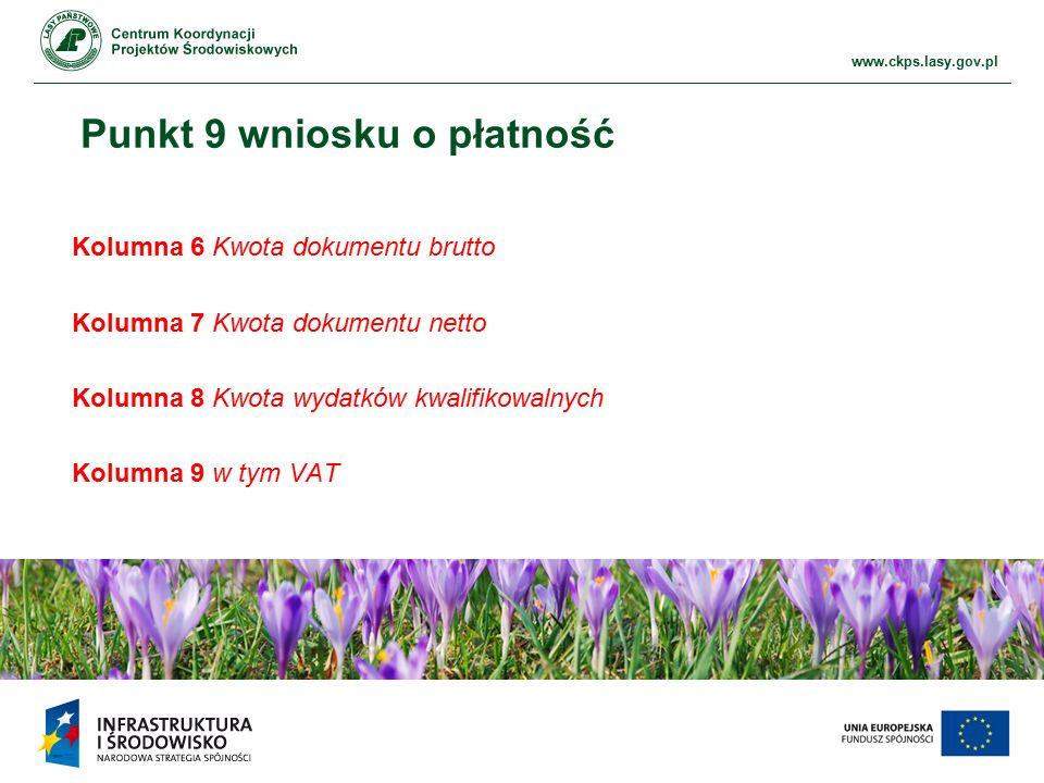 www.ckps.lasy.gov.pl Punkt 9 wniosku o płatność Kolumna 6 Kwota dokumentu brutto Kolumna 7 Kwota dokumentu netto Kolumna 8 Kwota wydatków kwalifikowalnych Kolumna 9 w tym VAT