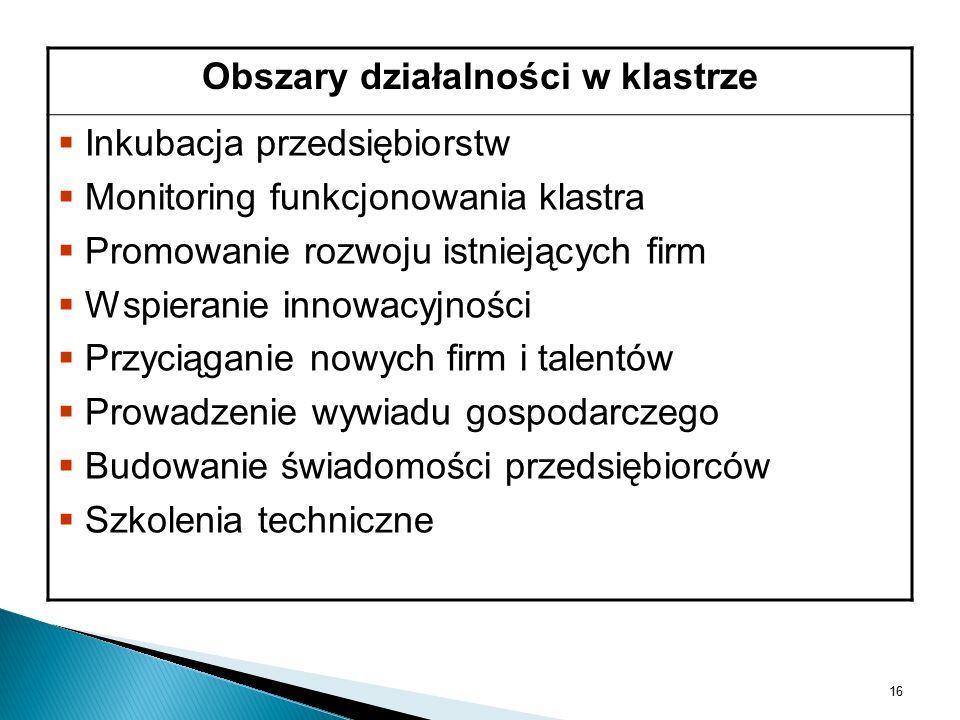 Obszary działalności w klastrze   Inkubacja przedsiębiorstw   Monitoring funkcjonowania klastra   Promowanie rozwoju istniejących firm   Wspieranie innowacyjności   Przyciąganie nowych firm i talentów   Prowadzenie wywiadu gospodarczego   Budowanie świadomości przedsiębiorców   Szkolenia techniczne 16
