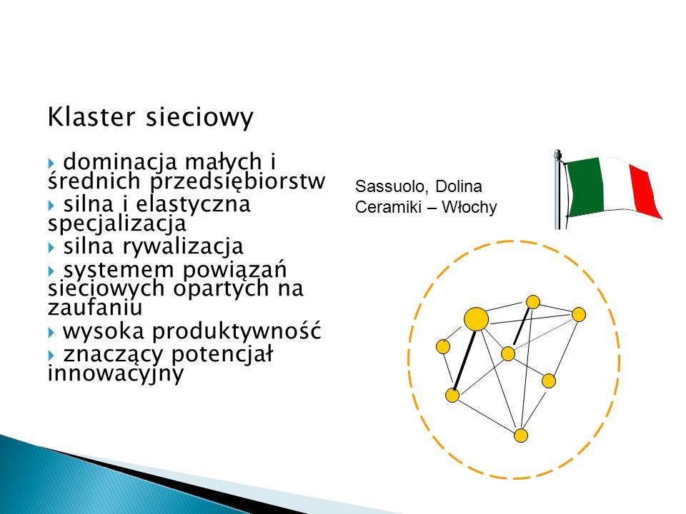 Klaster sieciowy  dominacja małych i średnich przedsiębiorstw  silna i elastyczna specjalizacja  silna rywalizacja  systemem powiązań sieciowych opartych na zaufaniu  wysoka produktywność  znaczący potencjał innowacyjny Sassuolo, Dolina Ceramiki – Włochy