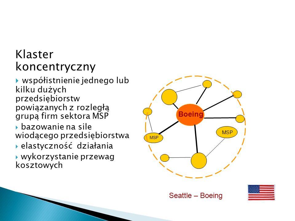 Klaster koncentryczny  współistnienie jednego lub kilku dużych przedsiębiorstw powiązanych z rozległą grupą firm sektora MSP  bazowanie na sile wiodącego przedsiębiorstwa  elastyczność działania  wykorzystanie przewag kosztowych MSP Boeing Seattle – Boeing