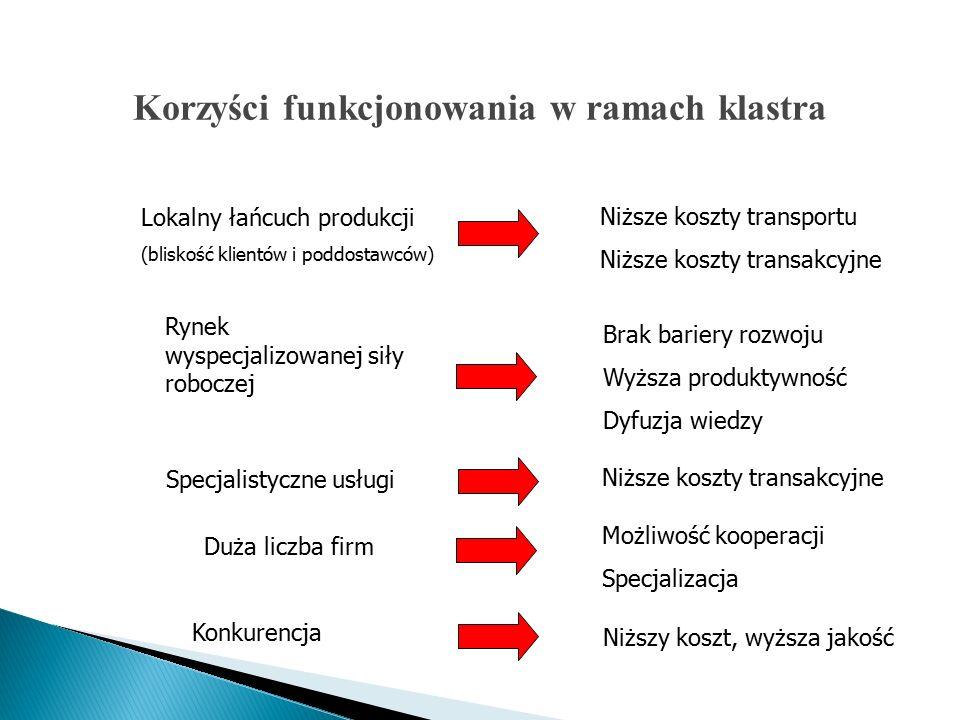 Lokalny łańcuch produkcji (bliskość klientów i poddostawców) Niższe koszty transportu Niższe koszty transakcyjne Rynek wyspecjalizowanej siły roboczej Brak bariery rozwoju Wyższa produktywność Dyfuzja wiedzy Specjalistyczne usługi Niższe koszty transakcyjne Duża liczba firm Możliwość kooperacji Specjalizacja Konkurencja Niższy koszt, wyższa jakość Korzyści funkcjonowania w ramach klastra