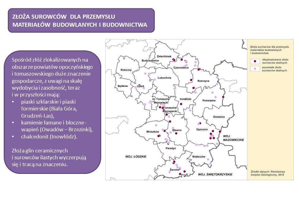 Spośród złóż zlokalizowanych na obszarze powiatów opoczyńskiego i tomaszowskiego duże znaczenie gospodarcze, z uwagi na skalę wydobycia i zasobność, teraz i w przyszłości mają: piaski szklarskie i piaski formierskie (Biała Góra, Grudzeń-Las), kamienie łamane i bloczne - wapień (Owadów – Brzezinki), chalcedonit (Inowłódz).