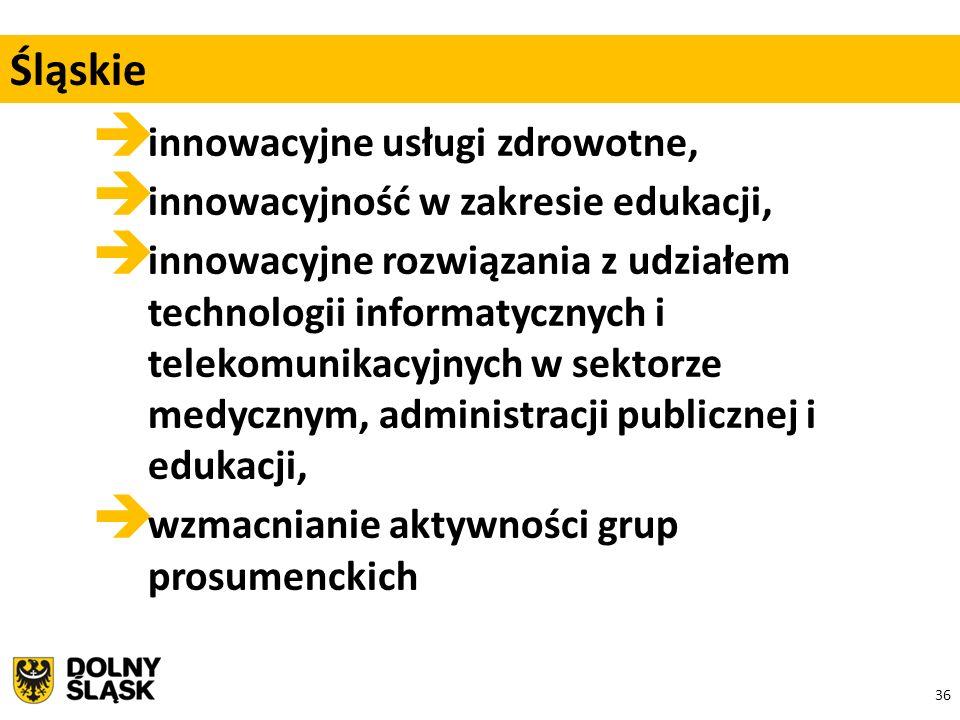 36  innowacyjne usługi zdrowotne,  innowacyjność w zakresie edukacji,  innowacyjne rozwiązania z udziałem technologii informatycznych i telekomunikacyjnych w sektorze medycznym, administracji publicznej i edukacji,  wzmacnianie aktywności grup prosumenckich Śląskie