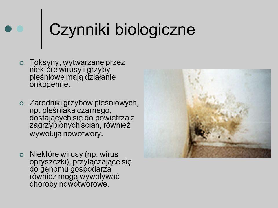 Czynniki biologiczne Toksyny, wytwarzane przez niektóre wirusy i grzyby pleśniowe mają działanie onkogenne. Zarodniki grzybów pleśniowych, np. pleśnia