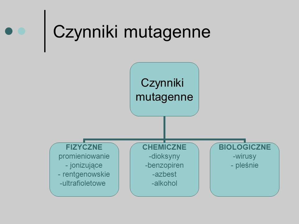 Czynniki mutagenne Czynniki mutagenne FIZYCZNE promieniowanie - jonizujące - rentgenowskie -ultrafioletowe CHEMICZNE dioksyny benzopiren azbest alkohol BIOLOGICZNE wirusy pleśnie