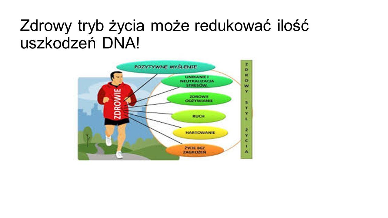 Zdrowy tryb życia może redukować ilość uszkodzeń DNA!