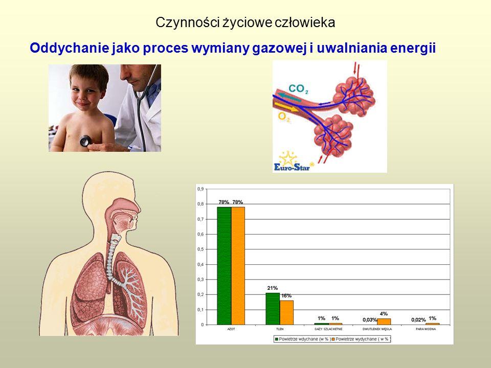 Oddychanie jako proces wymiany gazowej i uwalniania energii